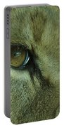 Eye Of The Lion Portable Battery Charger