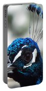 Eye Of The Peacock Portable Battery Charger