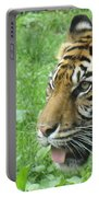 Eye Of The Tiger Portable Battery Charger