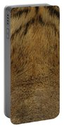 Eyes Of The Tiger Portable Battery Charger by Sandy Keeton