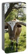 Fabulous Texas Longhorn Portable Battery Charger