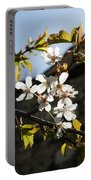 Facades And Fruit Trees - The Church And The Plum Portable Battery Charger