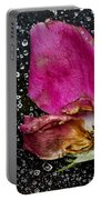 Faded Rose - Youth And Age Portable Battery Charger