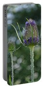Fading Teasel Flower Portable Battery Charger