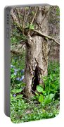 Fairy Place Portable Battery Charger