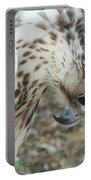 Bowing Falcon Portable Battery Charger