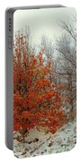Fall And Winter 2 Portable Battery Charger