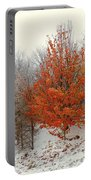 Fall And Winter Portable Battery Charger