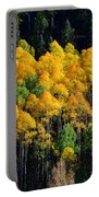 Fall Aspens Portable Battery Charger