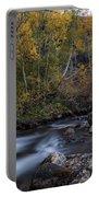 Fall At Bishop Creek Portable Battery Charger