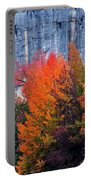 Fall At Steele Creek Portable Battery Charger