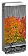 Fall At The Mann Portable Battery Charger