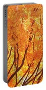 Fall At The Shore Portable Battery Charger