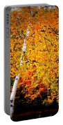 Dazzling Birch Portable Battery Charger