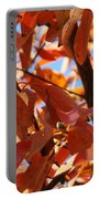 Fall Color 2 Portable Battery Charger