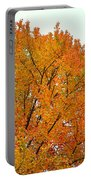 Fall Colors 2014-11 Portable Battery Charger