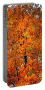 Fall Colors 2014 - 14 Portable Battery Charger