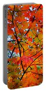 Fall Colors 2014-4 Portable Battery Charger