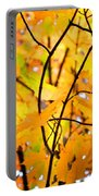 Fall Colors 2014-7 Portable Battery Charger