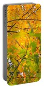 Fall Colors 2014-8 Portable Battery Charger