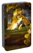 Fall Colors 6737 Portable Battery Charger