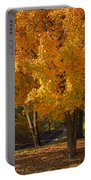 Fall Colors Portable Battery Charger by Adam Romanowicz