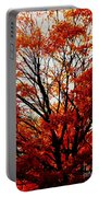 Fall Colors Cape May Nj Portable Battery Charger