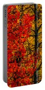 Fall Colors Dp Portable Battery Charger