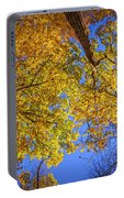 Fall Colors In The Sky  Portable Battery Charger