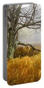 Fall Ferns And Fog Portable Battery Charger