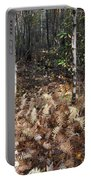 Fall Ferns Portable Battery Charger