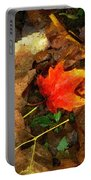 Fall Flames Out Portable Battery Charger