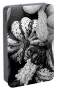 Fall Gourds Black And White Portable Battery Charger