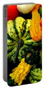 Fall Gourds Portable Battery Charger