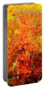 Fall In Full Bloom Portable Battery Charger