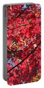 Fall In Illinois Portable Battery Charger
