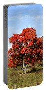 Fall In The Pastures Portable Battery Charger