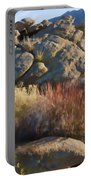 Fall In The Santa Rosas Portable Battery Charger by Scott Campbell