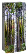 Fall Ivy In Pine Tree Forest Portable Battery Charger