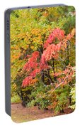 Fall Landscape 3 Portable Battery Charger