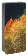 Fall Leave On The East Verde River Portable Battery Charger