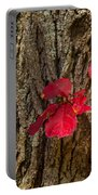 Fall Leaves Against Tree Trunk Portable Battery Charger