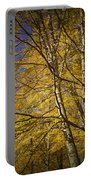 Fall Leaves And Trees In West Michigan No171 Portable Battery Charger
