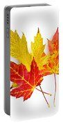 Fall Maple Leaves On White Portable Battery Charger