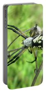 Fall Meadow Spider - Argiope Aurantia Portable Battery Charger