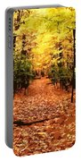 Fall Path Portable Battery Charger