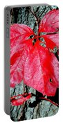 Fall Red Leaf Portable Battery Charger
