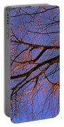 Fall Reflections By Diana Sainz Portable Battery Charger