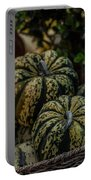 Fall Squash Harvest Portable Battery Charger