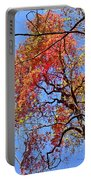 Fall Trees 2 Of Wnc Portable Battery Charger